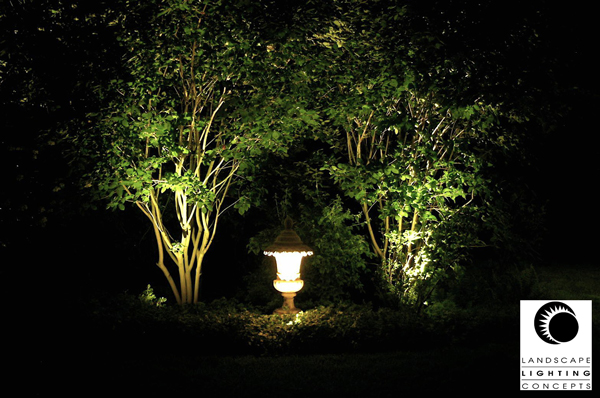 Lighting-Concepts-Trees